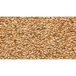 Солод пшеничный «Cara Ruby» Castle Malting Бельгия 1КГ молотый