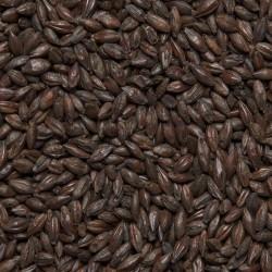 """Солод ячменный «Roasted Barley""""» Castle Malting Бельгия 1КГ молотый"""