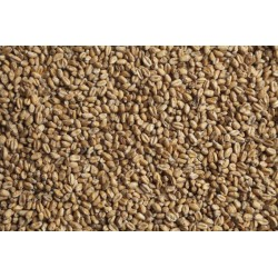 Солод пшеничный «Wheat Blanc» Castle Malting Бельгия 25КГ молотый
